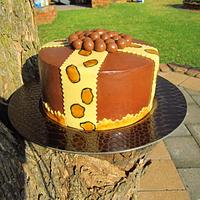 Leopard spots  by Michelle