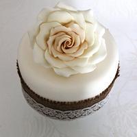 Miniture Rose cake