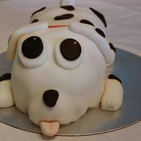 Spotty dog, Dalmation cake