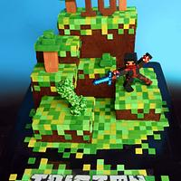 Minecraft Cake for Tristan