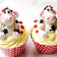 Fairfield Cakes