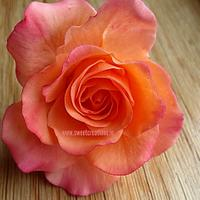 Burnt Orange Sugar Rose