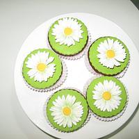 Gerbera Cupcake. by Sugar&Spice by NA