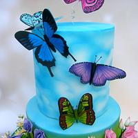 Miss Ellie's butterfly birthday cake