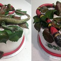 Lizard & snake