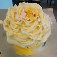 ROSES!I love roses