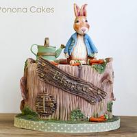 Peter Rabbit cake <3 <3