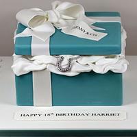 Tiffany Box with Horseshoe Necklace by kingfisher