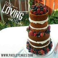 Lanae - Paisley Cakes
