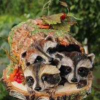Raccoons in the old stump