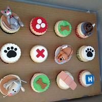 Veterinary Cupcakes