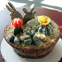 Pot with cactus