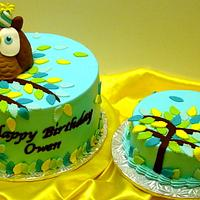 Owl First Birthday by Stephanie Dill