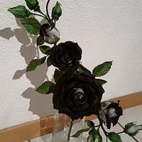 Black an White Roses...