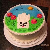 Springtime Bunny Cake