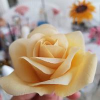 Ricepaste rose