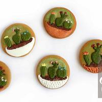 Mini Cactuses