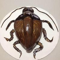 Roach !!!