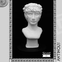"""ANTINOUS"" - GRECO ROMAN STATUES CHALLENGE"