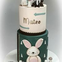 Nordic style cake