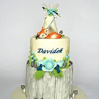 woodland & tee-pee cake