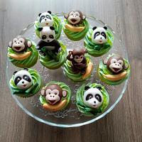 Panda and monkey