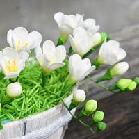 Hello spring, with beautiful freesias