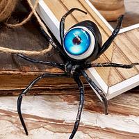 Eye Spy Spider