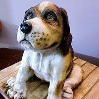 Beagle Dog Cake