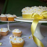 Daisy cake & Cupcakes