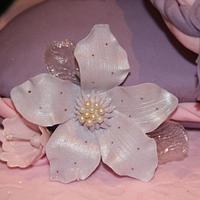 Birthday cake  by twiseasnice