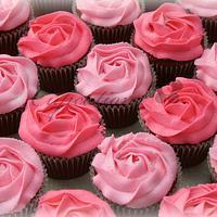 Pink Rose Swirls