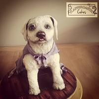 Icing Smiles superhero puppy cake