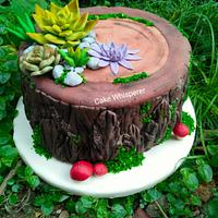Tree bark Cake