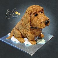 Baxter the Dog cake