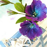Playing with colours - free formed Eustoma ( Lisianthus) in blue and violet shades