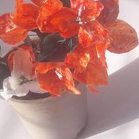 Wafer paper Bougainvillea flower