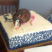Uninvited guest, birthday cake