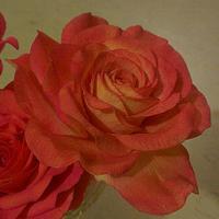 Rose for Mum <3