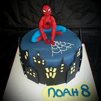 Spiderman for a superhero!