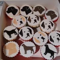 Labrador cupcakes