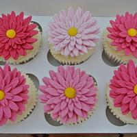 Crythansemum Cupcakes