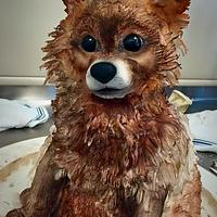 Puppy Cake... disaster