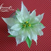 Wafer paper Poinsettia