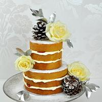 Winter naked cake