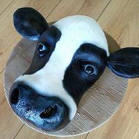 Cows head:)