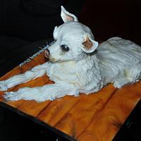 Masher the Dog
