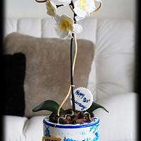 Orchid plant anniversary cake