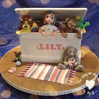 toy box for lily