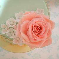 Pink rose MacMillan cake